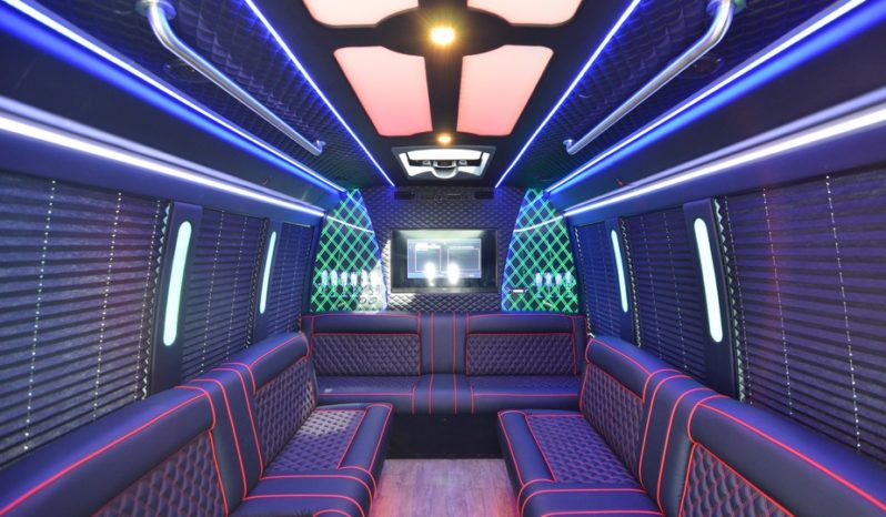 2019 E-350 Limo Bus full