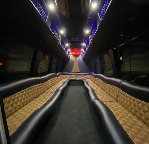 2014 E-450 Limo Bus full
