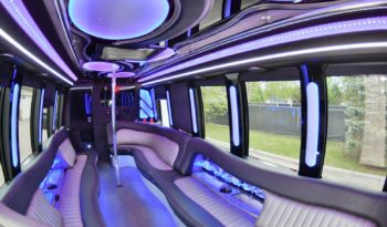 2014 E-450 Limo Bus w/ Lavatory full