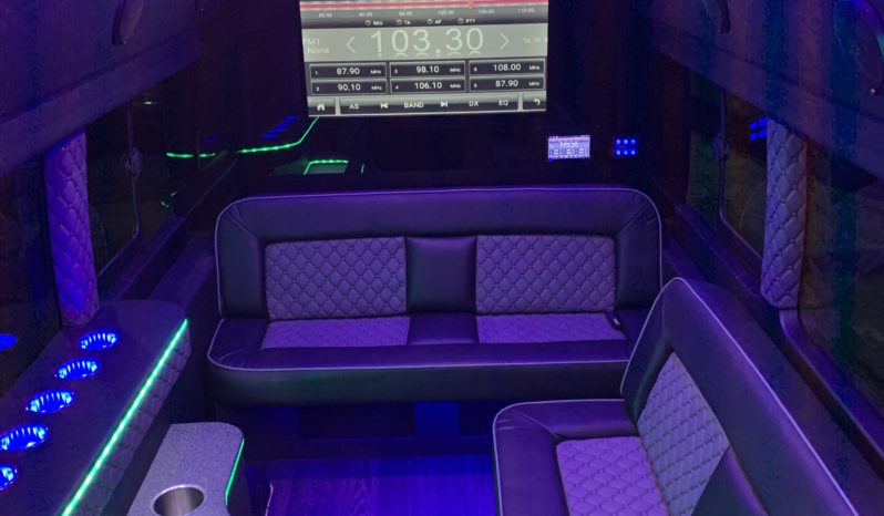 2019 Ford Transit Limo full