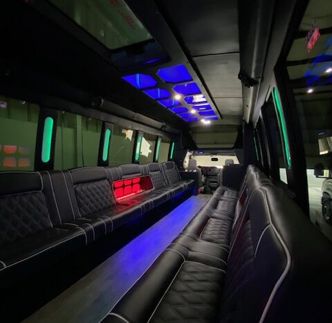 Global Motor Coach 2018 Ford E450 Party Bus full