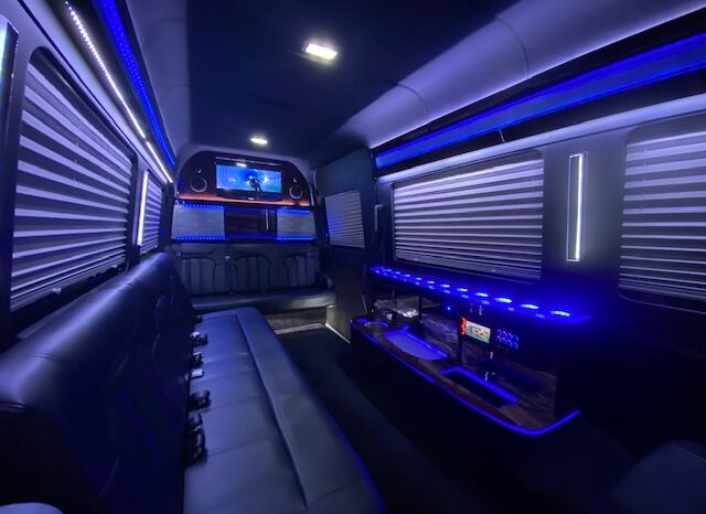 Global Motor Coach Presents this  Mercedes-Benz Sprinter 13 passenger By Royal full