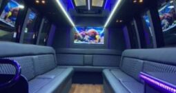 2011 Global Motor Coach Ford E450 Limo Bus